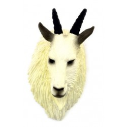 MOUNTAIN GOAT HEAD