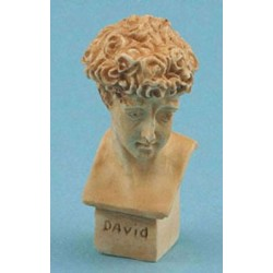 DAVID BUST 1 PC TAN