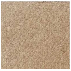 BEIGE CARPETING, 14 X 20