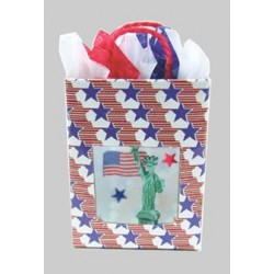 Patriotic Bag With Contents