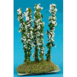 Larkspur Flower White 5Pc