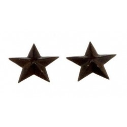 Rustic Star 1 Inch Scale 2 Pc