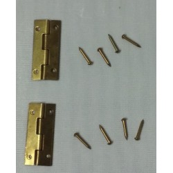Long Hinges 2PK/ Nails
