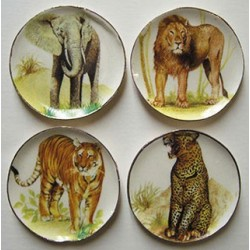 Elephant, Tiger, Lion, Leopard