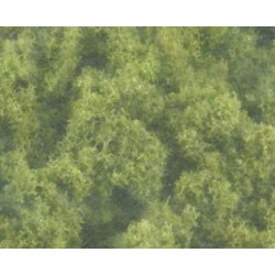 Bushes Clump Foliage Light Green