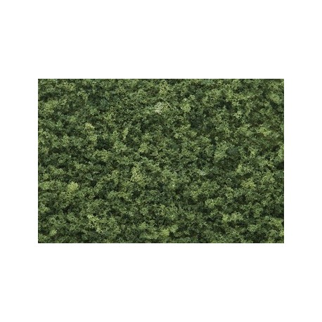 Coarse Turf-Medium Green