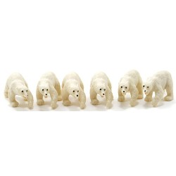 Polar Bear, 6 Pc